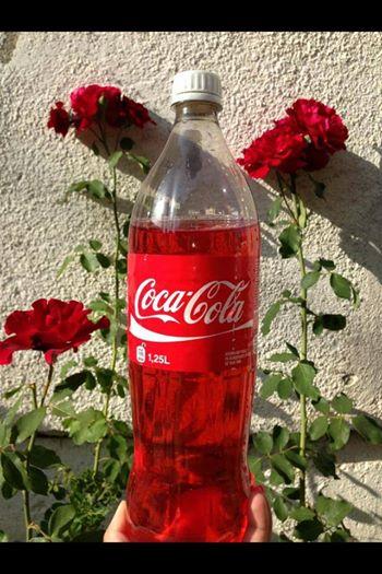 Gjakova Cola
