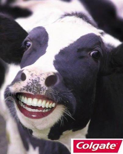Colgate Herbal per buzeqeshje perfekte