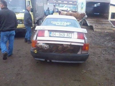 Shqiptari ta shfrytzon veturen mire