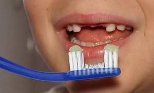 Gjirokastriti me furçë dhëmbësh