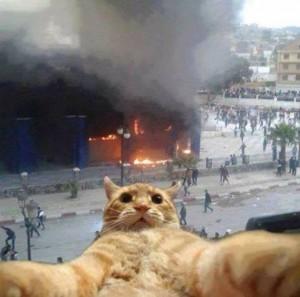 Selfie per qef