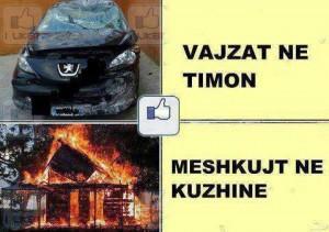 Zgjedhe timoni ose kuzhinen