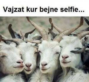 Vajzat per selfie...